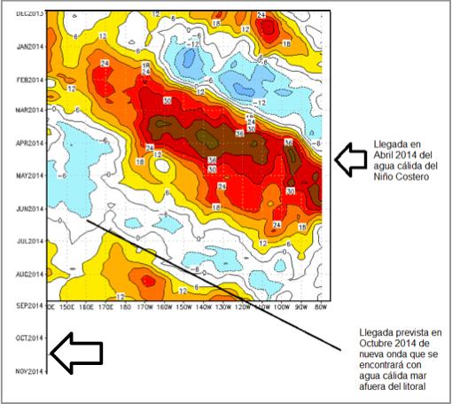 Figura Nº 3 - Recorrido transoceánico de Ondas Kelvin entre Oceanía y Sudamérica. Las unidades son hundimientos en mts. de la capa que separa el agua cálida superficial de la fría profunda y que refieren a la magnitud de la Onda.